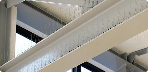 橋梁・高架下での鳥害対策イメージ1