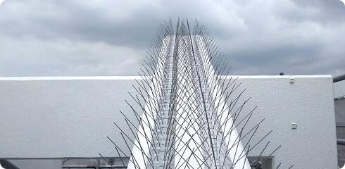 橋梁・高架下での鳥害対策イメージ4