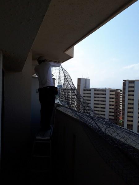 防鳥ネット設置工事 施工写真その4