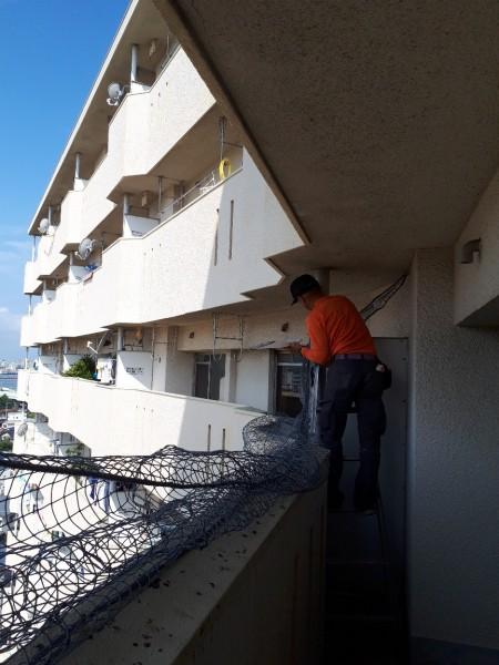 防鳥ネット設置工事 施工写真その3