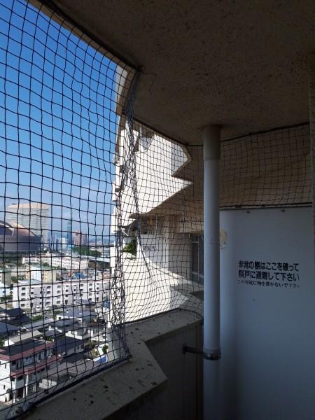 防鳥ネット設置工事 施工写真その2