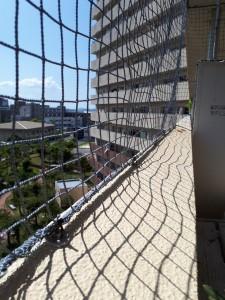 防鳥ネット設置工事の施工実績を更新しました。 サムネ