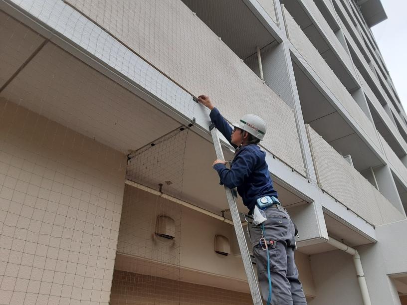 防鳥ネット補修工事